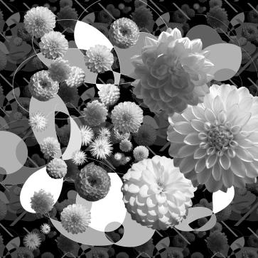 dahlia-pattern-03